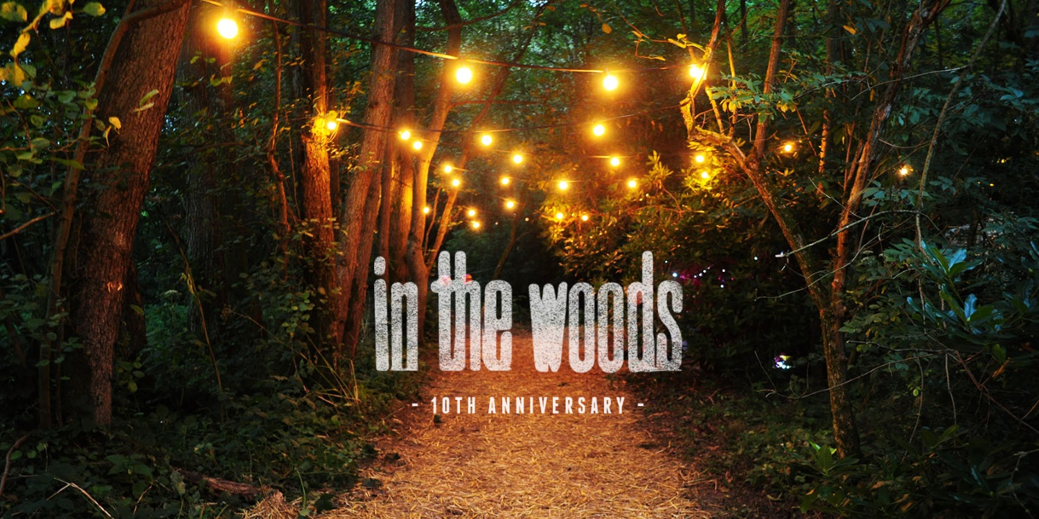 In the Woods 2016. Photo by: In the Woods 2016
