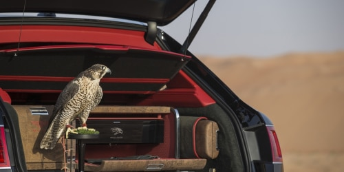 Bentayga Falconry By Mulliner
