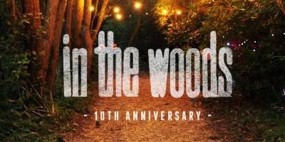 In the Woods 2016